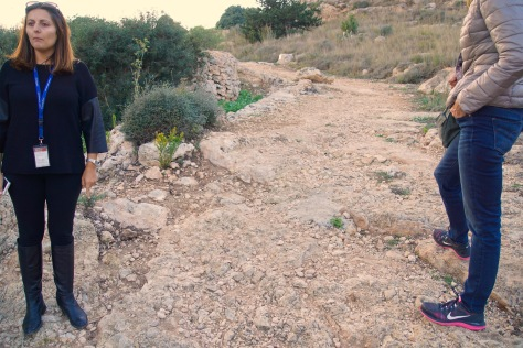 2000 Year Old Roman Road
